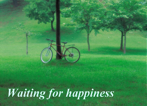 Waiting for happiness: bicycle in a lush green park